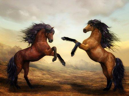 Horses, Wild Horses, Digital Art, Nature, Landscape