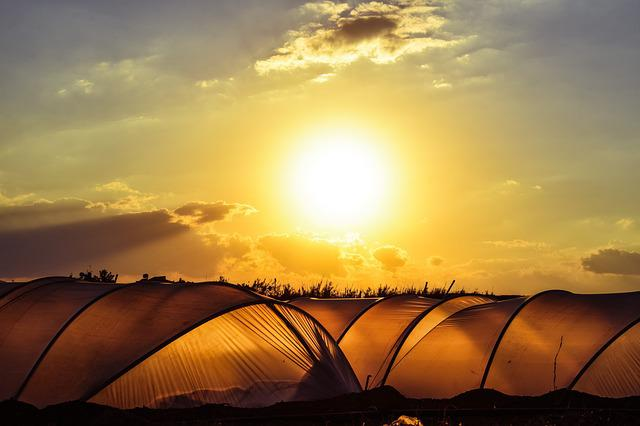 Greenhouse, Hothouse, Agriculture, Farm, Cultivation