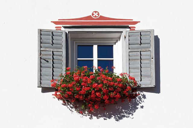 Window, Floral Decorations, Architecture, House, Plant