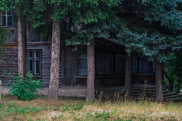 House, Blockhouse, Tree, Balance Beam, Spruce