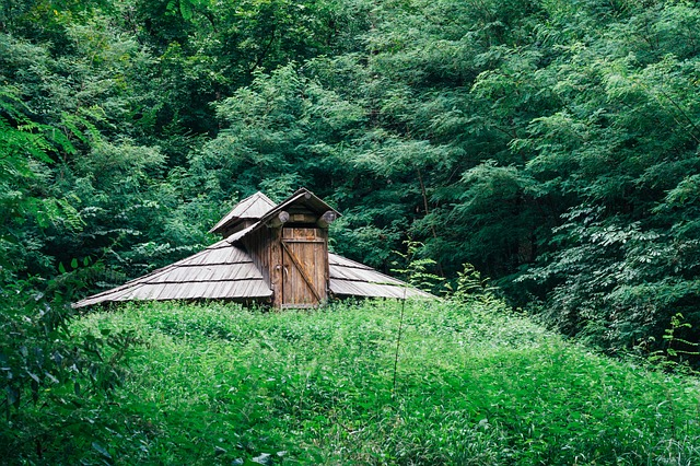 Cottage, House, Dugout, Greens, Old, Blockhouse, Cabin