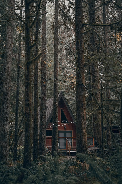 House, Forest, Green, Hill