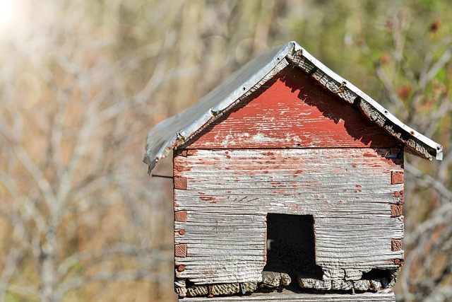 House, Old, Birdhouse, Old House, Wood, Vintage, Wooden