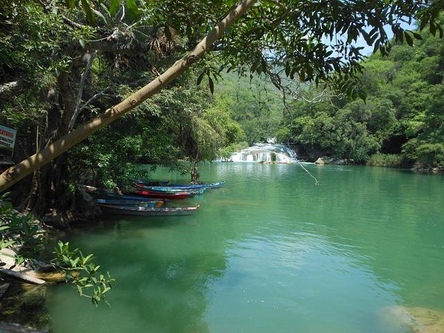 River, Mexico, Water, Nature, Tree, Landscape, Huasteca