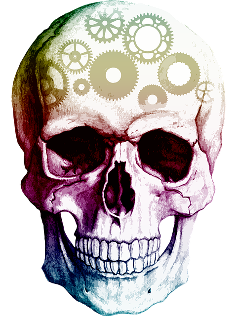 Skull, Cogs, Thinking, Human, Brain, Bone, Clever