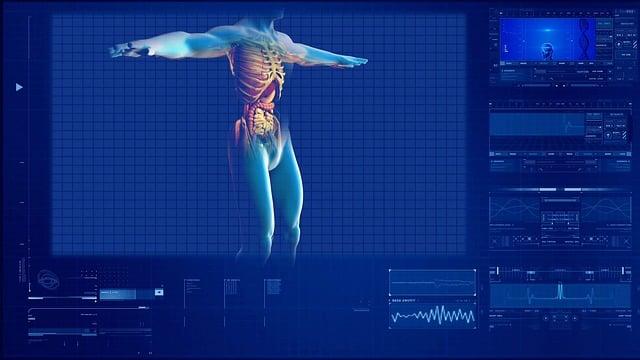 Human Digestive System, Human Internal Organ