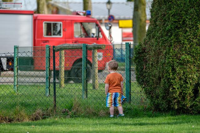 Grass, Human, Child, Fence, Fire, Person, Curious
