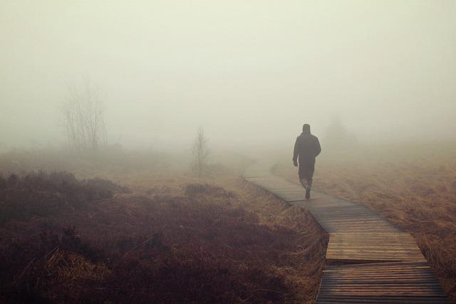 Fog, Moor, Marsh, Nebellandschaft, Person, Human, Swamp