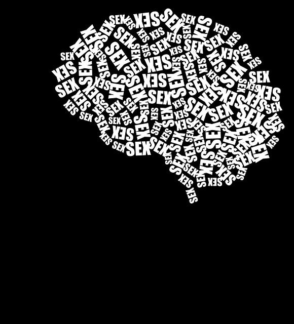 Cranium, Head, Human, Male, Man, People, Persons