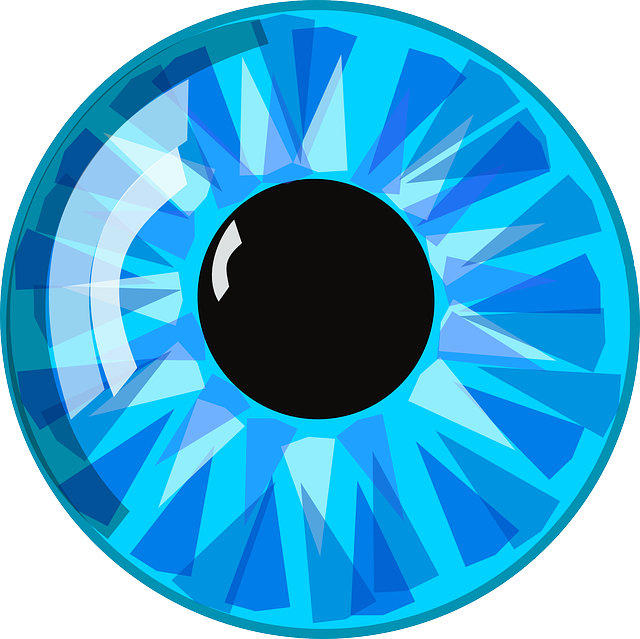 Eye, Blue, Pupil, Eyeball, Iris, Human, Anatomy, Macro