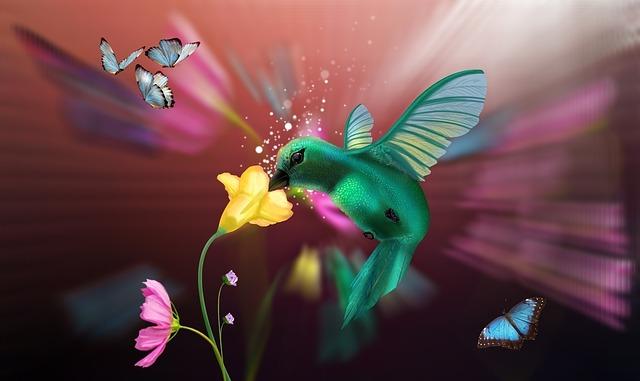 Beija Flor, Hummingbirds, Birds, Flowers, Light, Nature