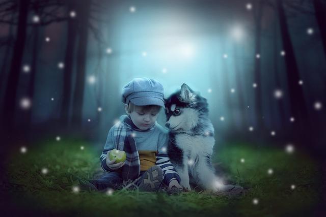 People, Nature, Baby, Mystery, Magic, Dog, Husky, Boy