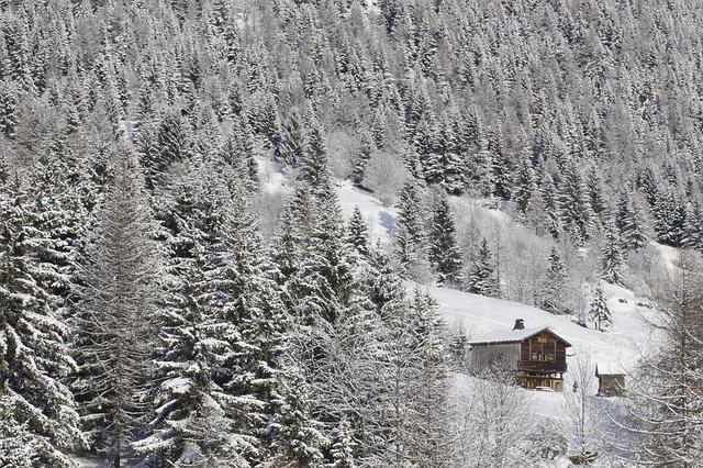 Winter, Mountains, Chalet, Hut, Woods, Snow, Forest