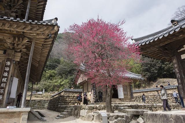 Hwaeomsa, Red Plum, Jiri