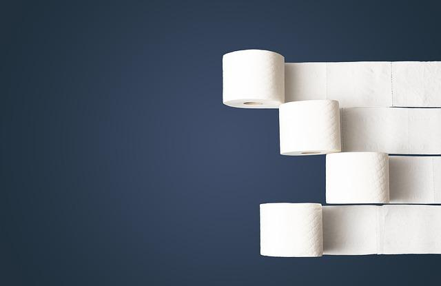Toilet Paper, Toilet, Paper, Loo, Hygienic, Health