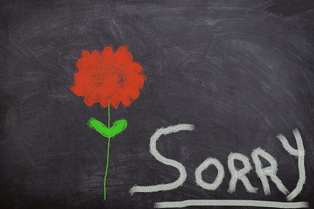 Board, Flower, Excuse Me, Sorry, I Beg Your Pardon