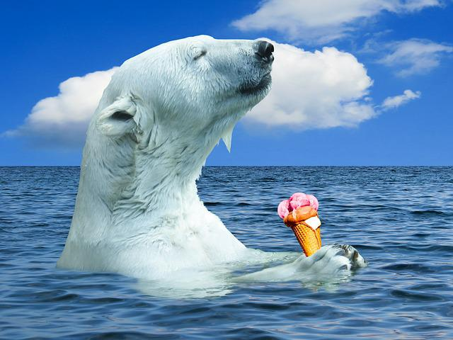 Polar Bear, Animal, Predator, Ocean, Ice, Sea