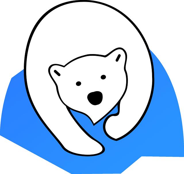 Polar Bear, Ice Bear, Animal, Bear, Mammal, White