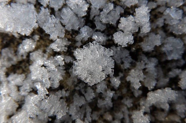 Frost, Crystal, Ice, Winter