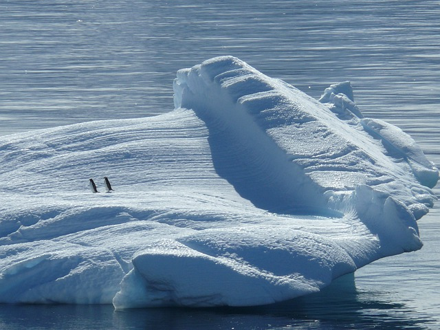 Iceberg, Ice Floe, Antarctica, South Pole, North Pole