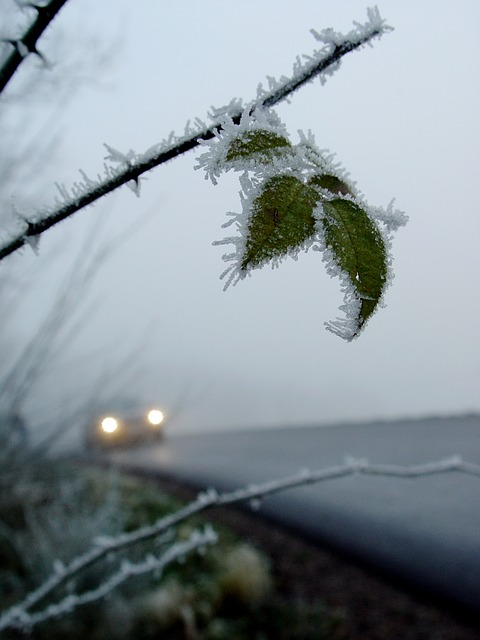 School Start, Risk, Ice, Road, View Verhätniss