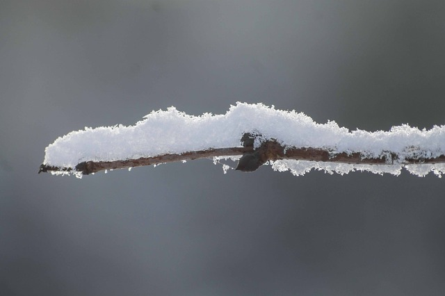 Snow, Snow Crystals, Frost, Winter, Ice, Sky
