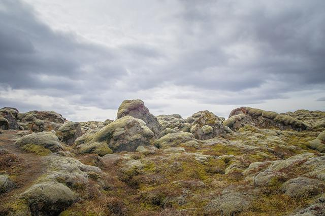Moss, Rock, Iceland, Nature, Stone, Forest, Green