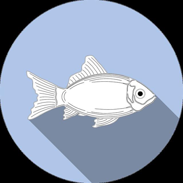 Fish, Allergy, Food, No Fishing, Symbol, Icon, Sign