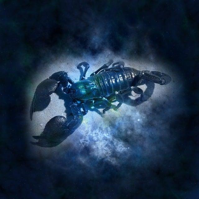 Horoscope, Astrology, Zodiac, Cancer, Icon Images