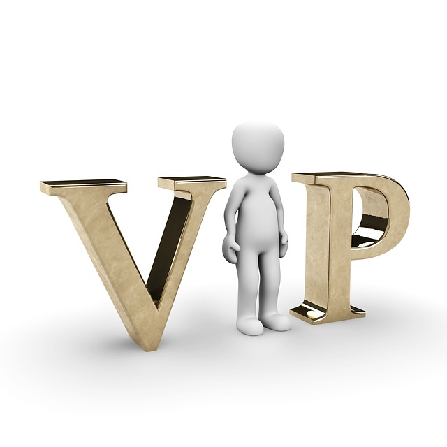 Vip, Important, Famous, Star, Musician, Show