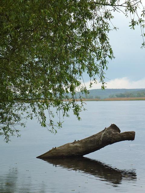Oderbruch, River, Impressions