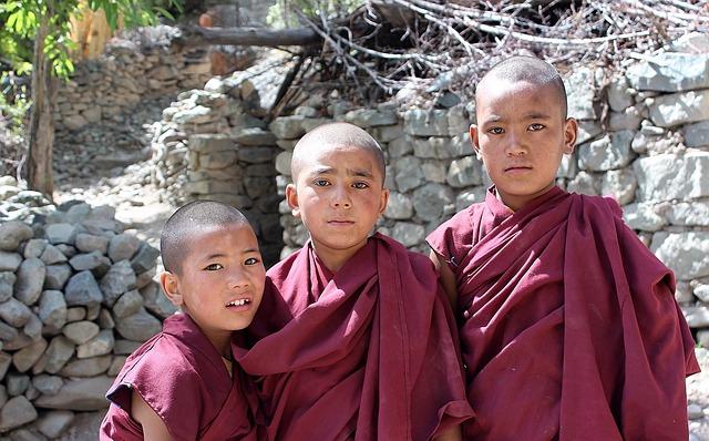 The Disciples, Budhisti, Children, India, Ladakh, Eyes