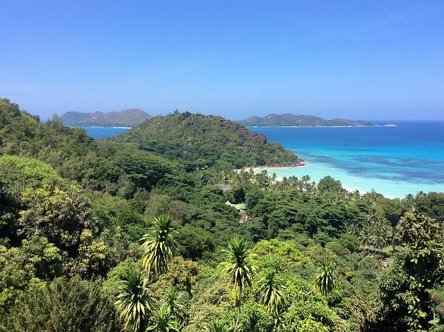 Seychelles, Indian Ocean, Palm Trees, Rock, Beach