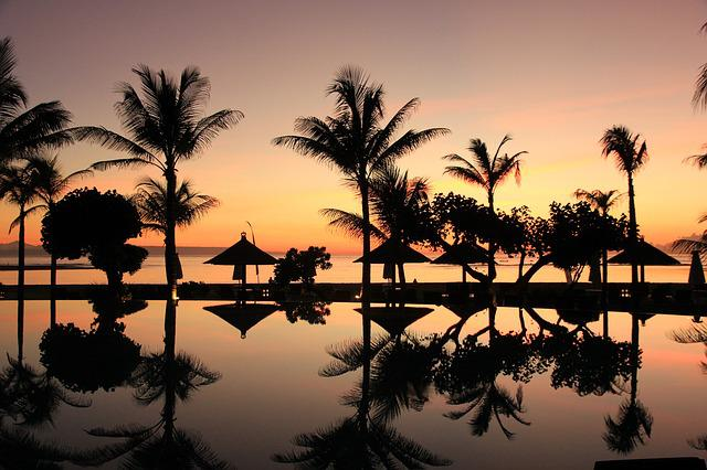 Bali, Palm Trees, Sunset, Travel, Indonesia