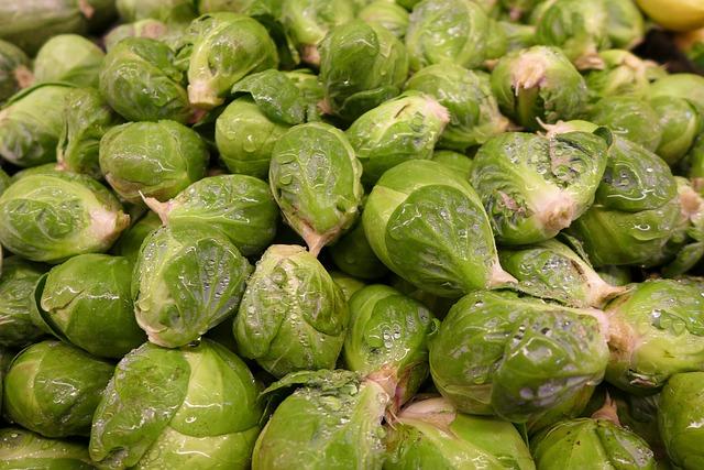 Brussel Sprouts, Vegetable, Green, Garden, Ingredients