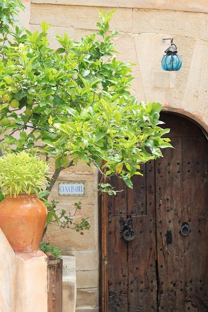 Door, Front Door, House Entrance, Input, Goal
