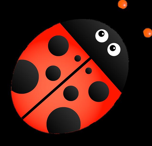 Ladybug, Insect, Animal, Cartoon, Bug, Beetle, Ladybird