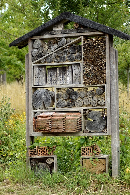 Insect Hotel, Insect House, Insect Box, Insect, Wood