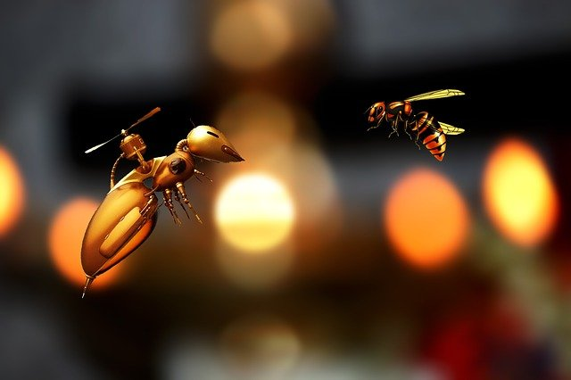 Bee, Abstract, Insect, Nature, Honey, Fly, Hive
