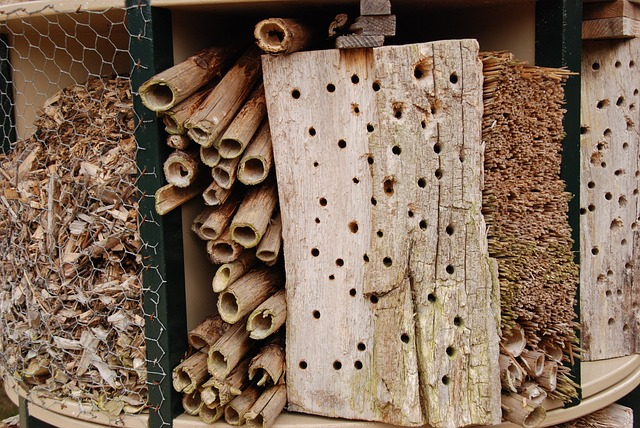 Bug, Insects Hotel, Hotel, Nature, Garden