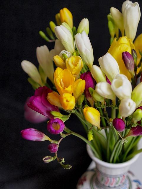 Flower, Decor, Background, Interior, Spring, Bouquet