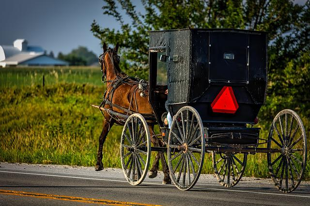 Amish, Iowa, Horse, Buggy, Carriage, Vintage