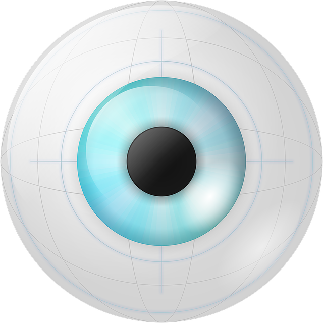 Eye, Iris, Robotic, Vision, Vista, Eyeball, Bionic Eye