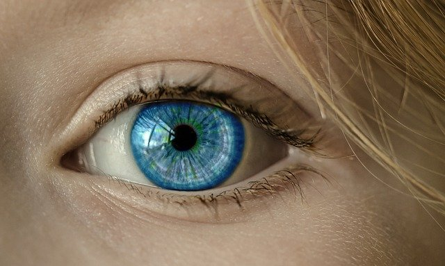 Eye, Blue Eye, Iris, Pupil, Face, Close Up, Lid