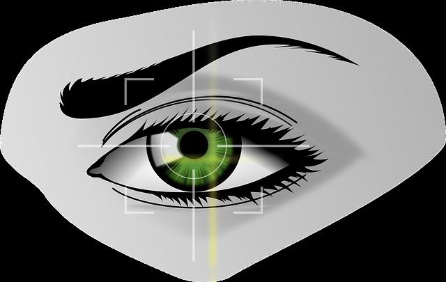 Biometrics, Eye, Security, Iris Scanner, Iris, Eyebrows