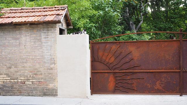 Hof, Driveway, Door, Iron Gate, Cat, Rest, House, Old