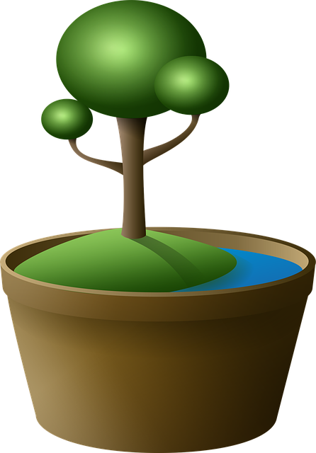Tree, Bonsai, Vase, Island, Green, Lake, Cartoon