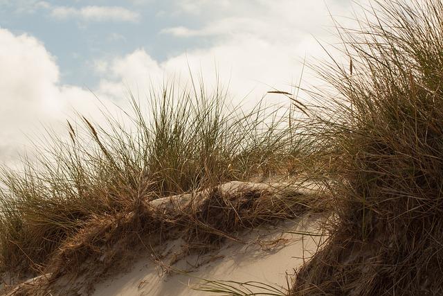 Dune, Island, North Sea, Amrum, Sand Dune, Clouds