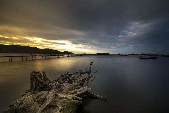 Light, The Sun, Phu Quoc, Island, Vietnam, Sunset, Tree