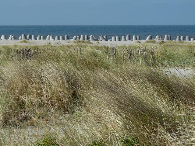 Hörnum, Sylt, Island, Landscape, Nature, Tetrapods
